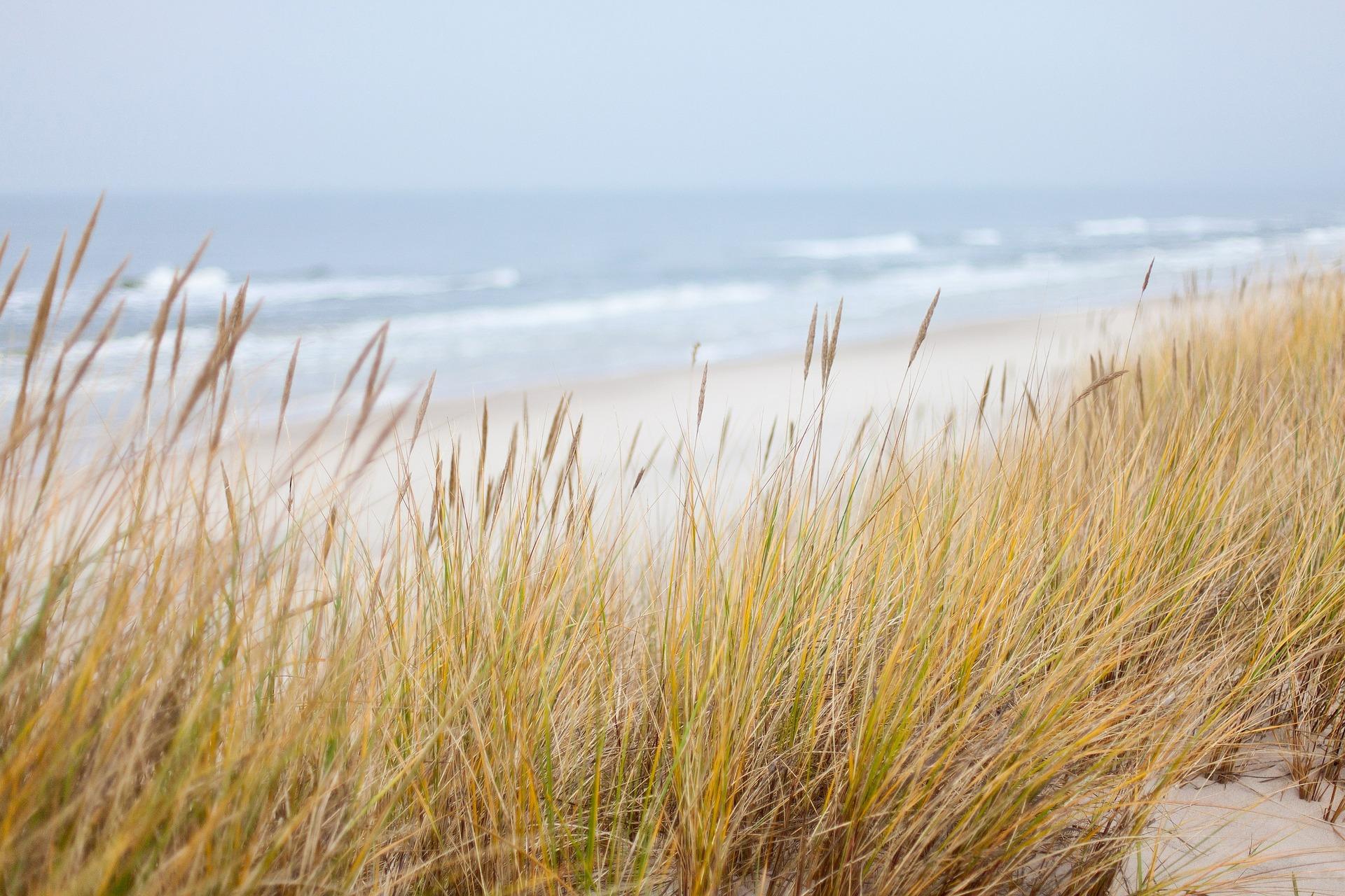 dunes-1936086_1920